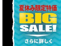 Nero Platinum 2018: Big Sale, 夏休み限定超特価!